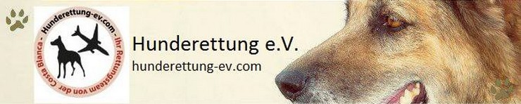 Hunderettung e.V., Berlin
