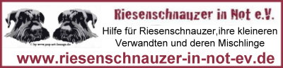 Riesenschnauzer in Not e.V.