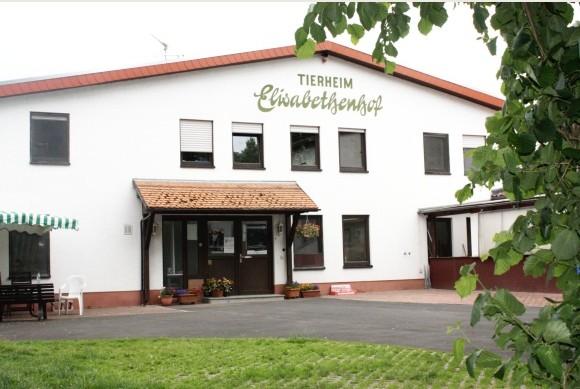 BMT Tierheim Elisabethenhof