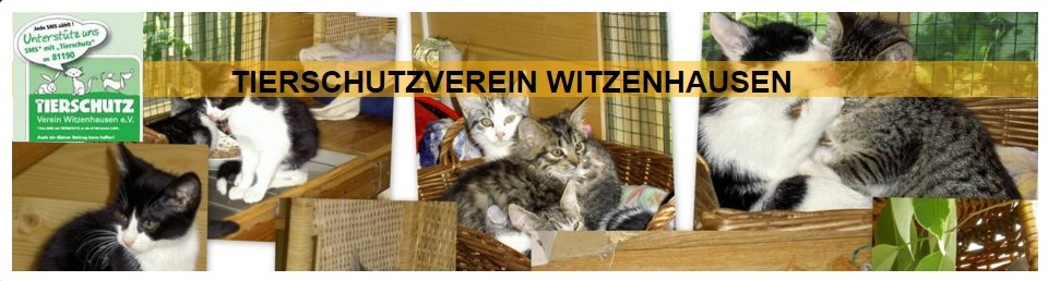 Tiere in Not Odenwald e.V.