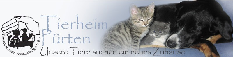 Tsv Ansbach