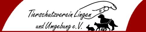 TSV Lingen