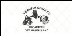 TSV Dithmarschen