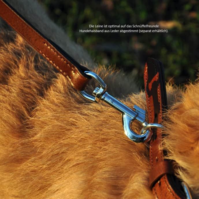 Hundeleine aus Leder - Leine und abgestimmtes Halsband