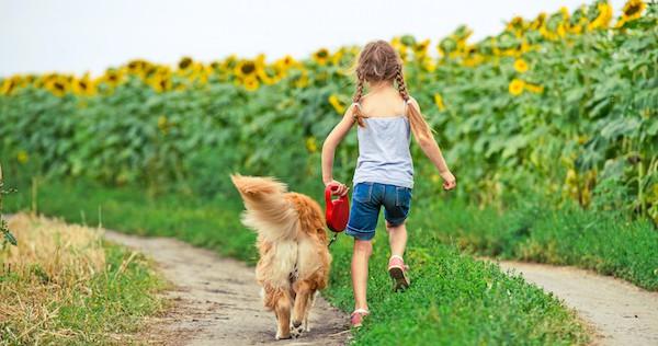 Kindheit mit Hund