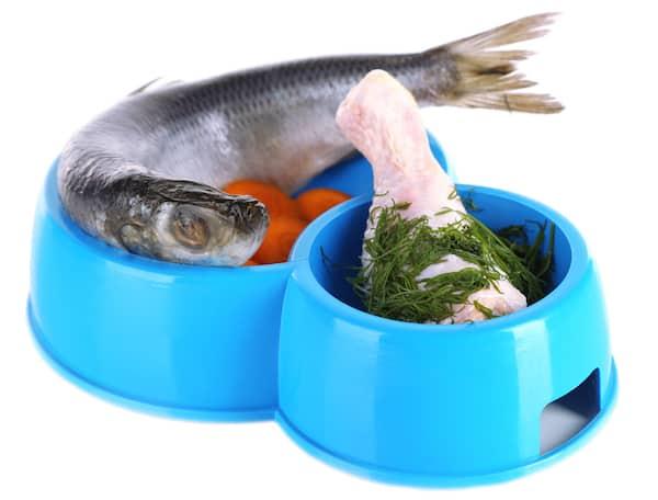 Fisch und Fleisch im Napf