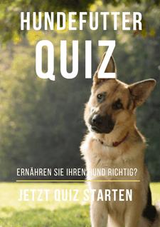 Hundefutter Quiz