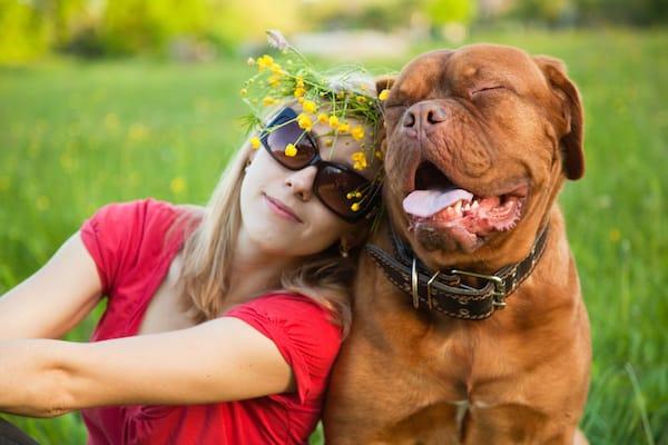 Mein Hund & Ich
