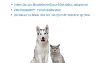 Beruhigung für Hunde und Katzen