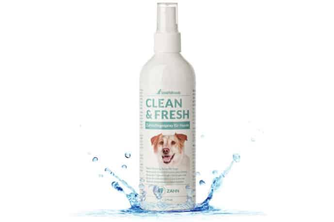 Zahnpflegespray für Hunde